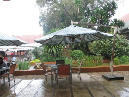 Sunbird Capital: Outdoor Eating Area in brief rain