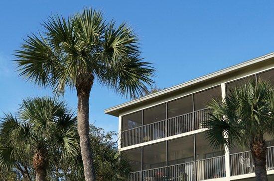 Sand Pointe Condominiums: Sand Pointe #131 3rd Floor End Unit
