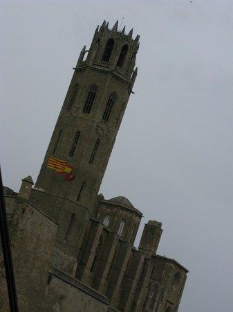 Turo Seu Vella: Catedral