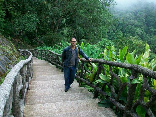 La Paz Waterfall Gardens: los senderos dentro del parque