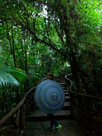 La Paz Waterfall Gardens: senderos del parque