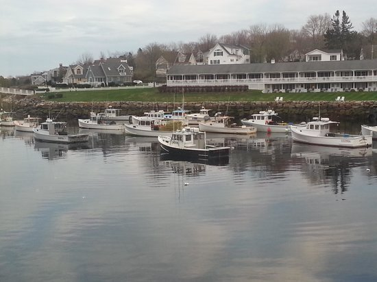 Gazebo Inn Ogunquit: Lots of lobster boats