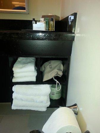 Hilton Anaheim : Towels