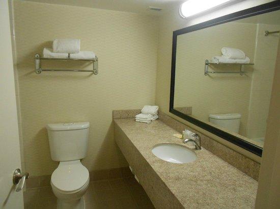 Holiday Inn San Antonio International Airport: Bathroom
