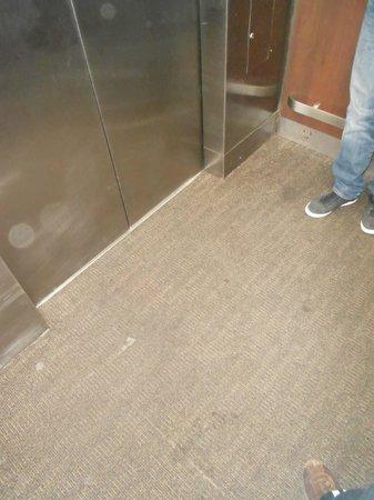 Holiday Inn San Antonio International Airport: Mucky carpet (lifts)