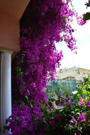 Hotel Metropolis: Room 31 view