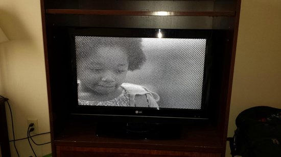 Chateau Resort & Conference Center: TV showing picture like this.