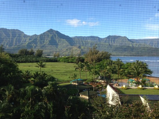 St. Regis Princeville Resort : View from the room