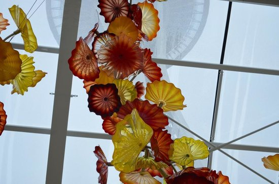 Chihuly Garden and Glass : space needle view