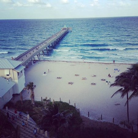 Wyndham Deerfield Beach Resort: Beautiful view from my room :)