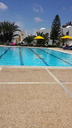 Hotel Djerba Haroun : the pool