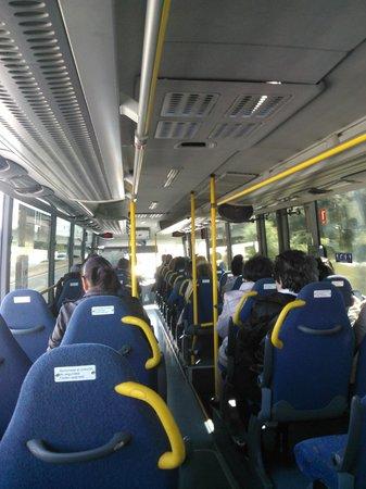 SHS Hotel Aeropuerto: Servicio publico, autobus
