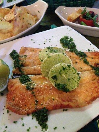 El Indio Feliz Restaurant Bistro: Trucha a la plancha