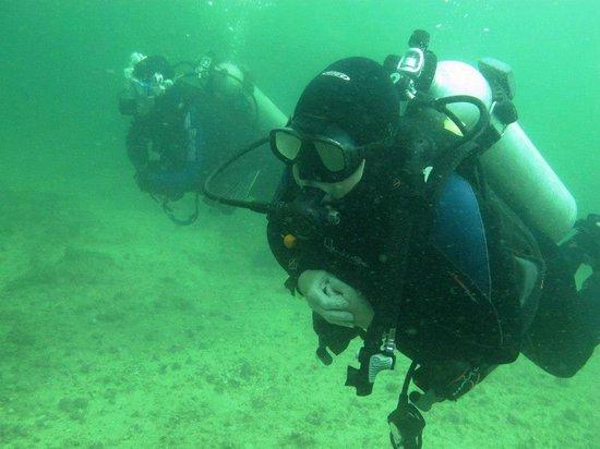 PV Sea Dive: ME diving !