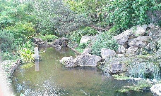 Orto Botanico di Roma: Water fall in Asian garden