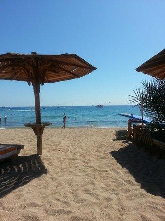 Sharm El Sheikh Marriott Resort : Beach...