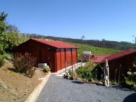 Madeira Sunset Cottage: Vista