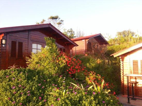 Madeira Sunset Cottage : Chalé