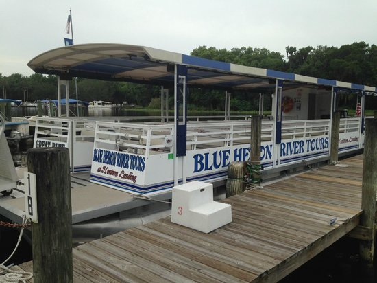 Blue Heron River Tours: Clean, Well-Maintained, Covered Pontoon Boat