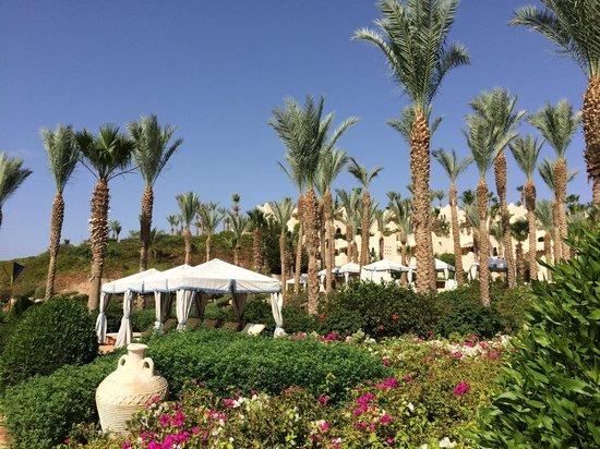 Four Seasons Resort Sharm El Sheikh: Amazing!
