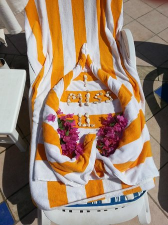 Sharm El Sheikh Marriott Resort : Our last day ...