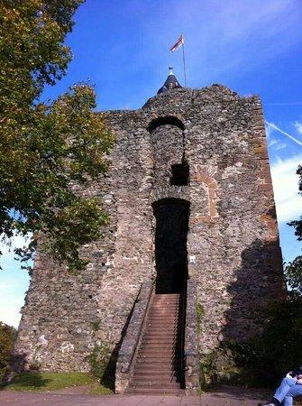Burg Saarburg