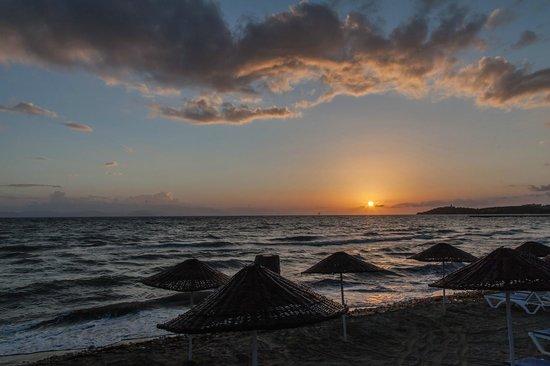 Ephesia Holiday Beach Club: Coucher de soleil depuis la plage privée