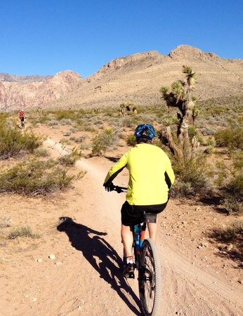 McGhie's Guided Bicycle and Hiking Tours: Basically a perfect morning
