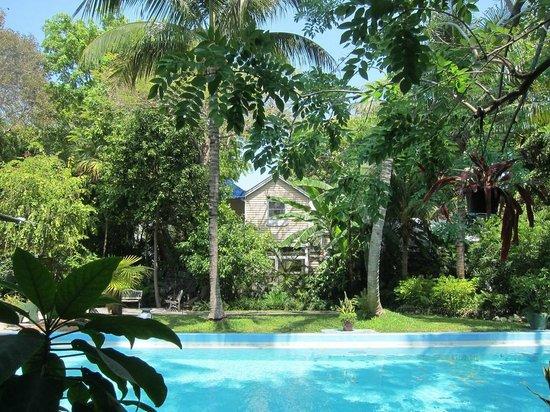Marquesa Hotel: View from Hemingway garden.
