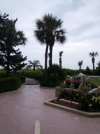 Beach Colony Resort : the grounds are beautiful