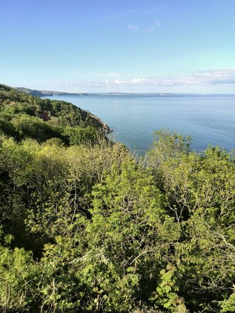 Babbacombe: View of the sea from the cliff walk