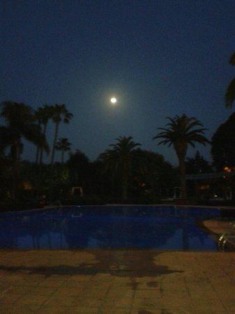Sofitel Rabat Jardin des Roses : Vue de la piscine
