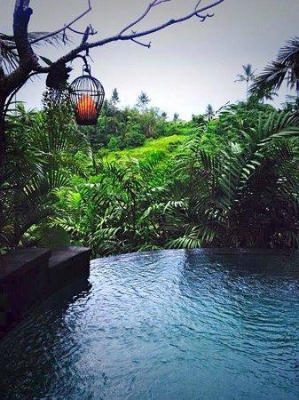 Bidadari Private Villas & Retreat: Zwembad en uitzicht