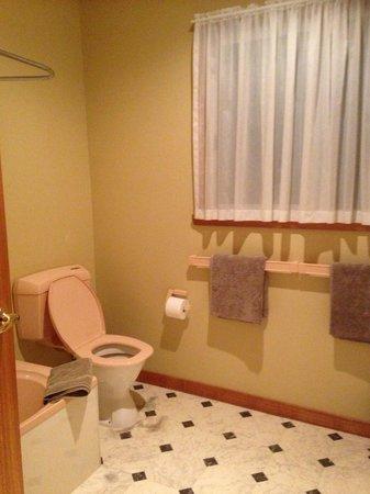 Anabel's of Scottsdale: Bathroom- laundry unit 3