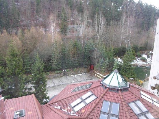 Hotel Las: Widok z Hotelu Las z naszego pokoju :)