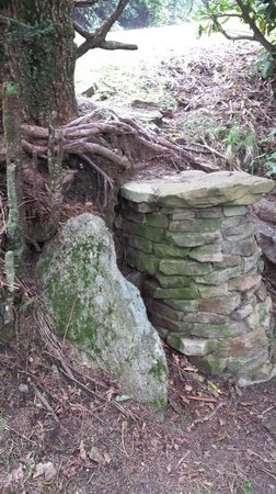 Blairsville, GA: A rock and a hardplace