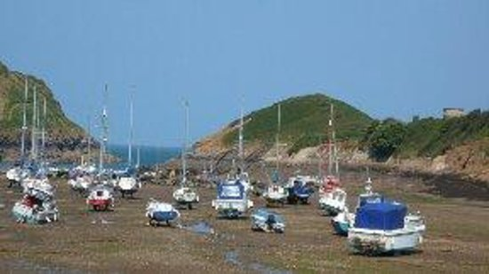 Watermouth Valley Camping Park : watermouth harbour