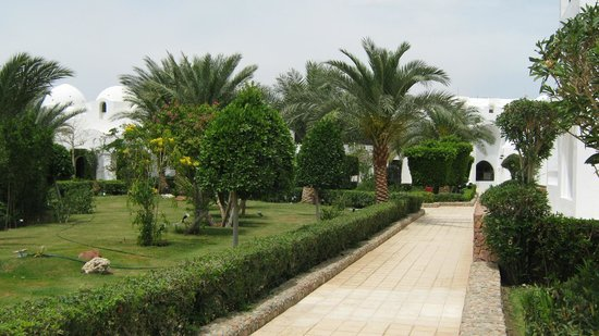 Arabella Azur Resort: Территория у корпуса А