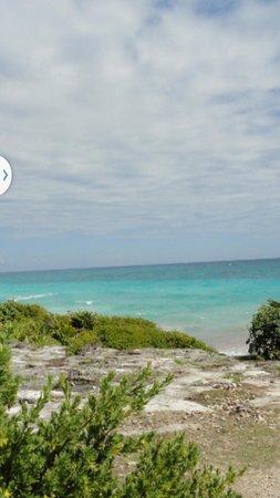Casa Felicidad B&B: хотим опять на Карибы