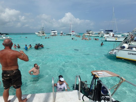 Stingray Sailing: back on board after a wonderful visit with the stingrays