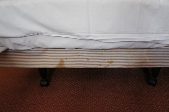 New Inn Hotel: Stained bed base