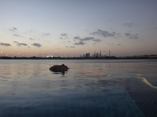 Shangri-La Hotel, Qaryat Al Beri, Abu Dhabi: he could have stayed here all night