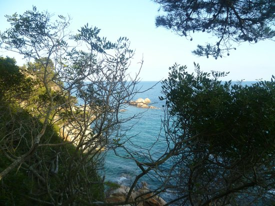 Camping Cala Llevado: Down to the beach