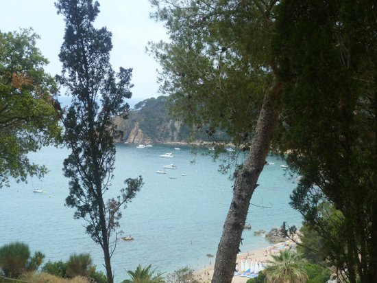 Camping Cala Llevado : On the walk down from the camp site