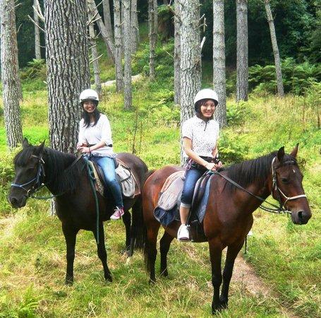Briars Horse Trek: Megumis friends