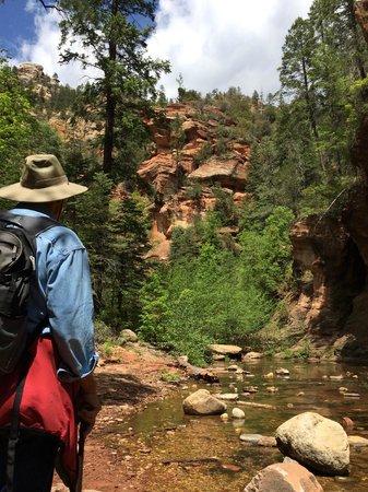 West Fork Oak Creek Trail: Along the trail