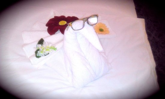 Hotel Cettia Beach Resort: The maids put my specs on the towel swan!