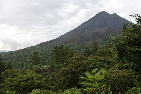 Arenal Observatory Lodge & Spa : View from the room