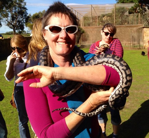 Paul's Place Wildlife Sanctuary : Suz with a 3.5 metre 15 kg python