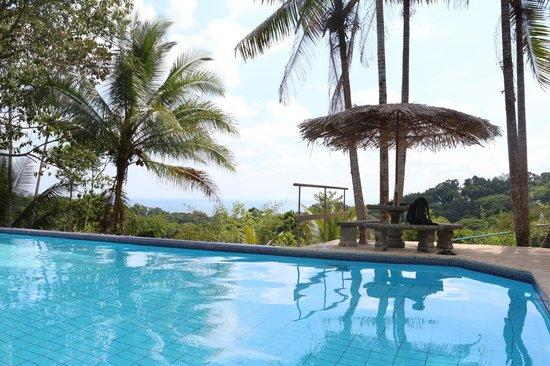 Finca Bavaria: the pool